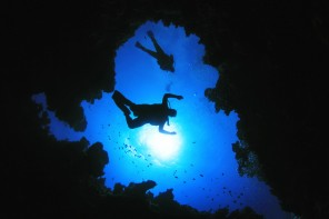 Everything you need to know about diving!